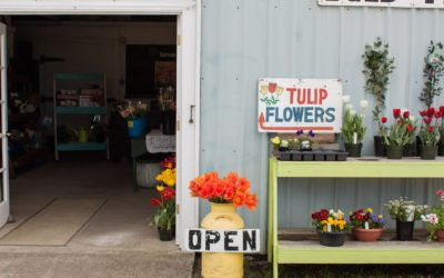 4 Flower Farms Not To Miss in Grays Harbor